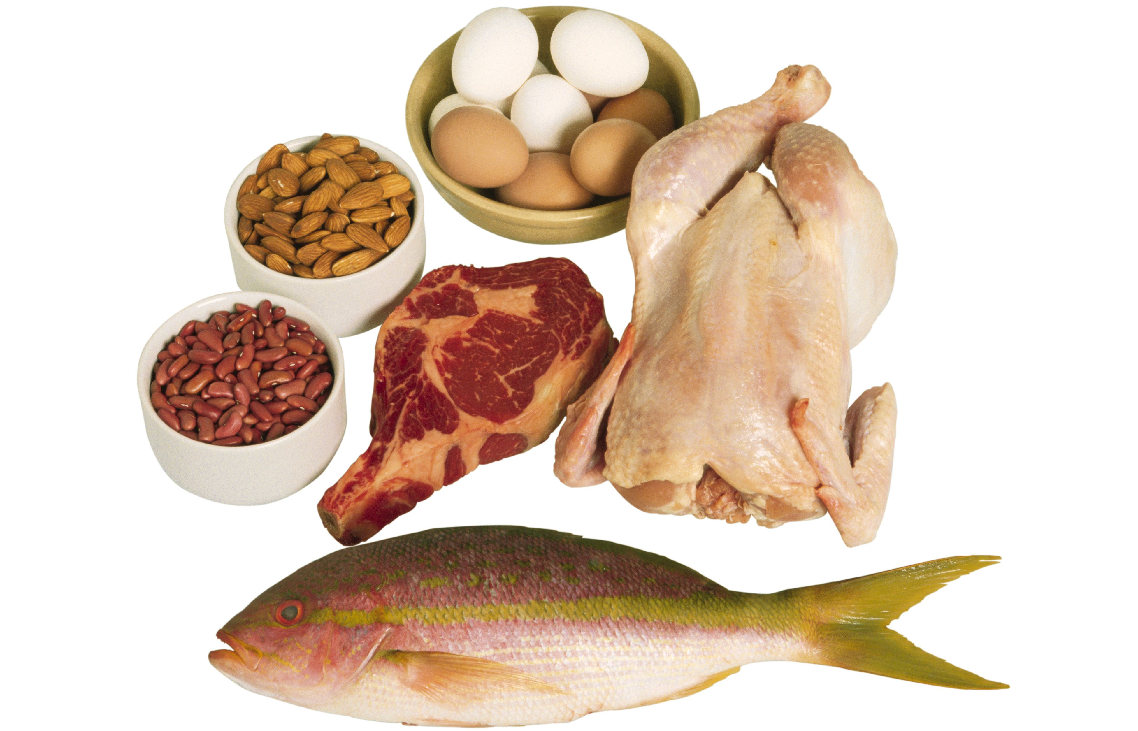 Easily Digested Foods Diet