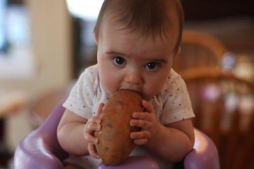 Chudnutie pri antipsychotikach - Stránka 36 Sweet-potato