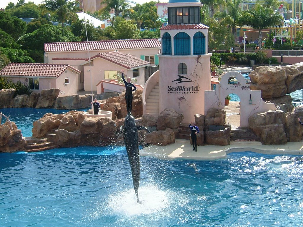 4 Sea World